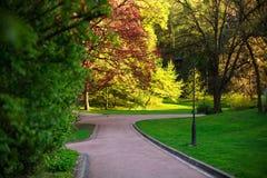 Park walkway in summer botanical garden Stock Photo