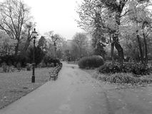 Park in Wenen in zwart-wit Stock Fotografie