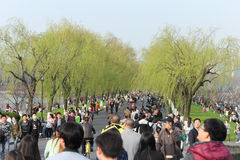 Visitors at West Lake, Hangzhou Royalty Free Stock Photo