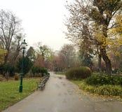 Park in Wien im Fall Lizenzfreies Stockfoto