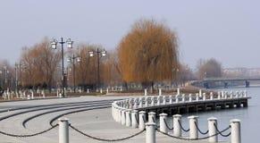 Park in winter Stock Photo
