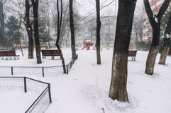 Park in winter Stock Photo