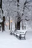 Park in winter and the lamp Royalty Free Stock Image