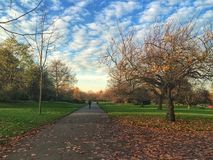 Park. Winter park in London Royalty Free Stock Images