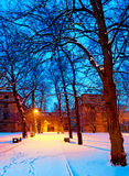 Park in the winter by night Royalty Free Stock Photos