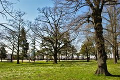 Park in Winter on a Sunny Day. Belgrade, Serbia. No leafs on trees. Clear, blue sky Royalty Free Stock Photos