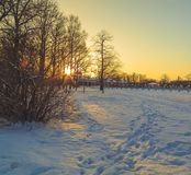 Park in winter at sunset. In Russia Stock Photography