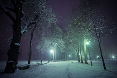 Park in winter time Stock Image