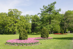 Free Park With Bed Royalty Free Stock Photos - 14474168