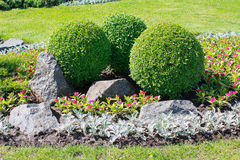 Free Park With Bushes And Stones Stock Image - 92655901