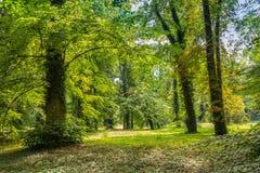 Park wokoło kasztelu w Dolna Krupa Zdjęcie Stock