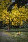 Park wokoło kasztelu w Dolna Krupa Obrazy Royalty Free
