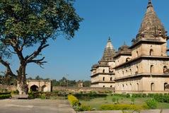 Park wokoło budynków z kamiennymi kopułami w hindusie Orchha Cenotaph budował w xvii wiek w India Obraz Royalty Free