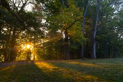 Park in Woluwe-Heiligem Lambert Lizenzfreie Stockfotografie