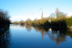 Park in York Lizenzfreies Stockbild
