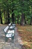 Park Zły Hall obraz royalty free