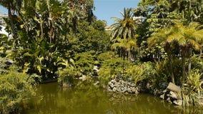 Park z śródziemnomorskimi roślinami przy Monaco, Cote D'Azur Francja zbiory