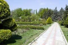 Park z długą drogą wzdłuż drzew Park z długą drogą wzdłuż drzew Krzywa ścieżka betonowe płytki na słonecznym dniu Obrazy Stock