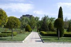 Park z długą drogą wzdłuż drzew Krzywa ścieżka betonowe płytki na słonecznym dniu Park z długą drogą wzdłuż drzew P Fotografia Stock