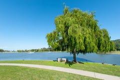 Park z jeziorem, fontannami drzewo i trawą, Obrazy Royalty Free