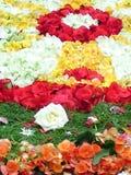 Park z kolorowym kwiecistym przygotowania fotografia royalty free
