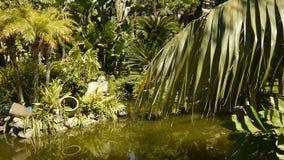 Park z tropikalnymi roślinami przy Monaco, Cote D'Azur Francja zdjęcie wideo
