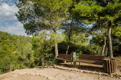 Park z Zależącym od mostem. Izrael obraz stock