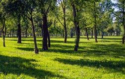 Park in Zagreb Stock Afbeeldingen