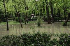 Park zalewający deszczem Zdjęcia Stock