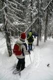 Parka branco, caminhantes do snowshoe imagens de stock royalty free