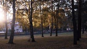 Parka miasta tymen zdjęcia royalty free