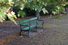 Parkbänk i den tidiga hösten Royaltyfria Bilder