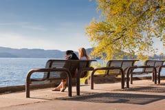 Parkbänk vid laken royaltyfri fotografi