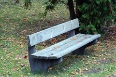 Parkbank im Herbst Stockfotografie
