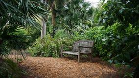 Parkbank im Palm Beach Lizenzfreie Stockbilder