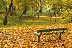 Parkbank mit Herbstblättern Lizenzfreie Stockfotos