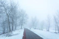 Parkbank und -bäume im Nebel Stockfotos
