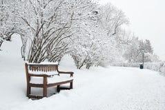 Parkbank und -bäume im Winter Stockfotografie
