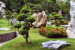 Parkbanzai, landschap Stock Foto