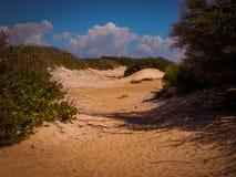 Parke Nacional Arikok Aruba Fotografering för Bildbyråer