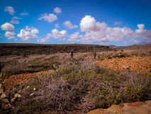 Parke Nacional Arikok Aruba Royaltyfri Bild