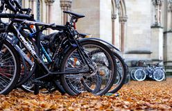 Parked Bikes And Autumn Leaves Royalty Free Stock Images