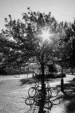 Parked bikes. Royalty Free Stock Photos