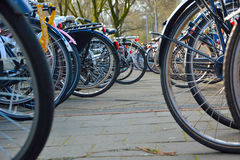 Parked  bikes Stock Photography