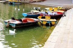 Parked Boats; Floating Ducks Royalty Free Stock Photo