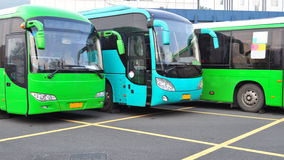 Parked buses. New green and blue buses parked at bus station Royalty Free Stock Image