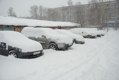 Parked cars covered with snow Royalty Free Stock Photo