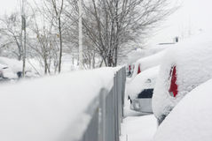 Parked cars covered in snow Stock Images