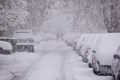 Parked cars covered with snow - snow storm Royalty Free Stock Image