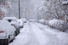 Parked cars covered with snow - snow storm Royalty Free Stock Photo